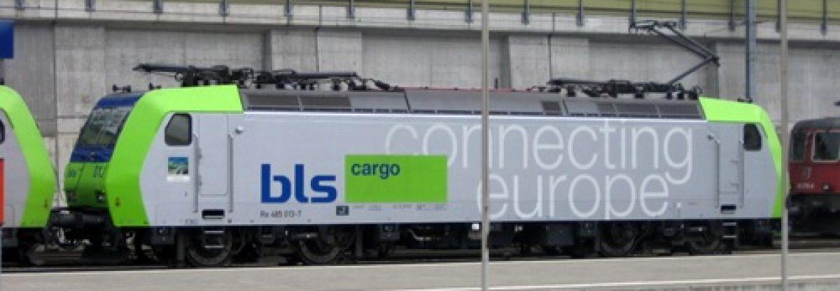 European Train Enthusiasts